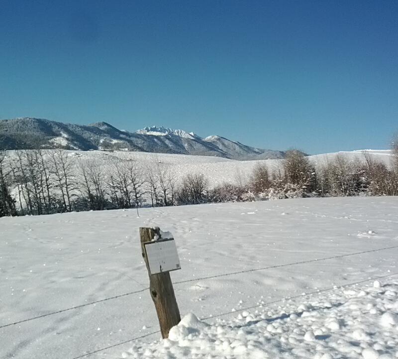 Mt. Gardner